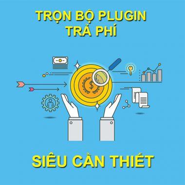 Plugin giúp seo trả phí cần thiết cho Website wordpress