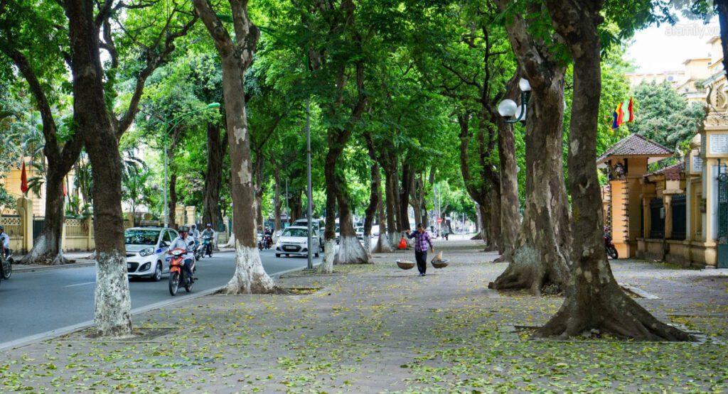 Danh sách tên đường thuộc Quận Cầu Giấy thành phố Hà Nội